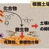じじぃの「科学・芸術_518_植物の根と微生物」