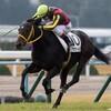 タコイチの【今週の勝負レース】宮崎特別!