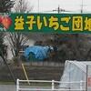 再来!栃木県・益子町イチゴ狩りツーリング2010