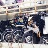 バイクの盗難対策、どうしよう? おすすめの盗難保険は?