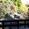 黒川温泉 穴湯