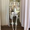 根本の骨を調整することで変化を実感。