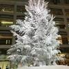 クリスマスイルミネーション 東京駅 「KITTE」にて