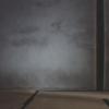 中島葵の映画
