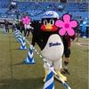 リレーマラソンと渋谷表参道ウィメンズラン