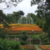 相模原公園、花達が元気です(2021年5月28日)