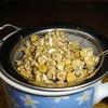 カモミールティーを飲んでみたくなりました。ですので種を蒔きました