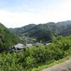 大日川 山上の果樹園集落