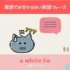 【直訳では分からない英語フレーズ#4】a white lie - 白いウソ?