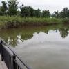 まつぶし緑の丘公園のトンボ池(埼玉県松伏)