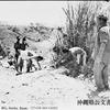 1945年 8月28日 『若い兵隊の自殺』