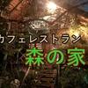 森の中にあるカフェレストラン【森の家】in伊勢原