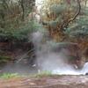 ロトルア行くなら無料のケロセネ天然温泉で身も心も温めろ!