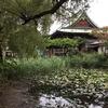 市川②-手児奈霊神堂
