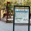 巨大アスレチック遊具で一緒に遊ぼう!マイナスイオンたっぷり『城北中央公園』穴場の遊具広場♩