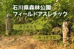 津幡・石川県森林公園のフィールドアスレチックで冒険気分の森林浴