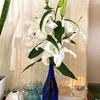自尊感情 - 花はそれぞれに美しい