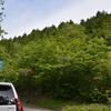 新樹の不入山遊山 林道歩き