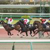 10/21(月)東京競馬◆◆厳選勝負レース◆◆