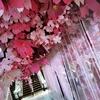 なんで今頃(桜)なのか?セントラル・ワールド前はクリスマスツリーやん。