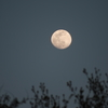 Photo No.72 / Today's Moon
