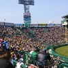 甲子園球場で阪神タイガースの試合をみてきました。