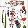 クリスマスの植物と文化