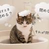 お風呂の換気中はドアを閉めるのか閉めないのかの問題に決着をつける!