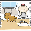 【犬漫画】台風21号の片付けで疲れた犬。