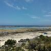 【沖縄・糸満市】レンタサイクルで行こう!②ローカルビーチ『大度浜海岸』のイノーで熱帯魚と泳ぐ