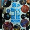 著書『海の極小!いきもの図鑑』