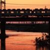 移動を極力抑え大和川へ