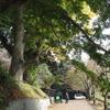 2020.11.08 雨引山登山~根本山公園