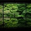 夏の京都:青もみじの瑠璃光院