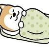 あまりに寒いので、電気毛布を工夫して寝ています( ̄ー ̄)