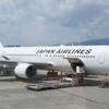 B777が無くてもB767があるじゃない JAL114便 伊丹ー羽田 搭乗記