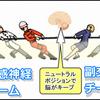 運動の質は、交感神経と副交感神経の綱引き大会で引き分けがベスト!!