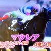 マウレア【4.8 阪神11R 桜花賞 GⅠ 芝1600m】
