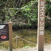 ミズスマシの池(神奈川県横浜)