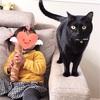 [黒猫と赤ちゃん]いちばんのお姉ちゃん