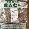 ゴーヤ 栽培日誌①🌿敷きわら🌾🌾の値段にビックリ🧐