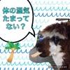 台風による湿気の影響は、痛み、胃腸病に!