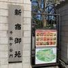 新宿御苑と桜