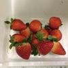 今年はじめての苺は長崎県産の「さちのか」にしてみました