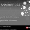 RAD Studio bds.exe オプション