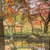 秋の紅葉が美しい佐賀の神埼にある、九年庵に行ってきたよ