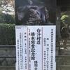 非公開文化財特別公開 白沙村荘 橋本関雪記念館、かぎ富