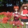 赤のファンタジーその弐 美ょぅι゛ょ祭り