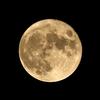 中秋の名月ここにあり。2021年の「中秋の名月」は「満月」です。