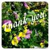 【ブログカスタマイズ】多謝!!感謝の意味を込めてご紹介させてください